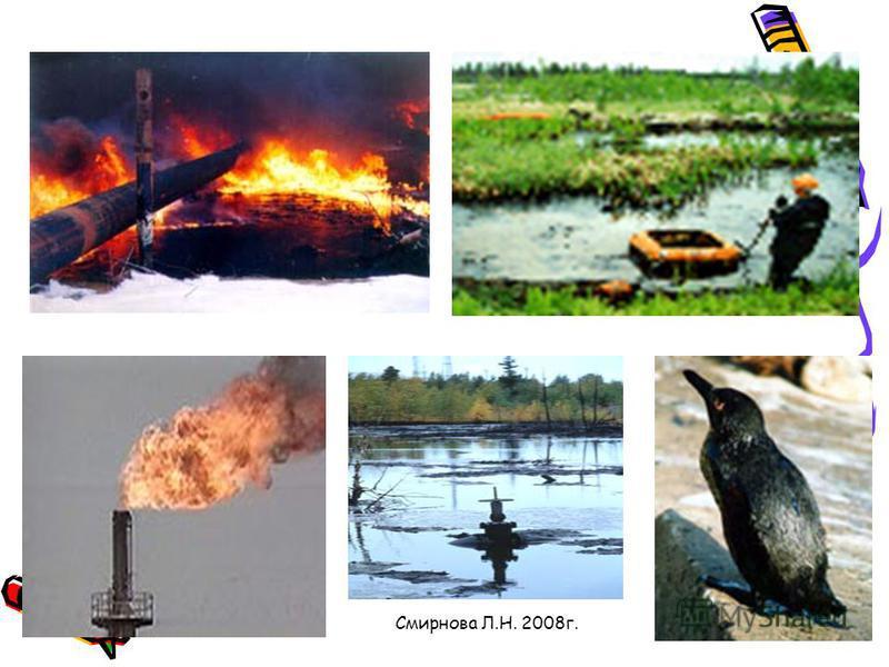 Смирнова Л.Н. 2008 г. Экологические проблемы