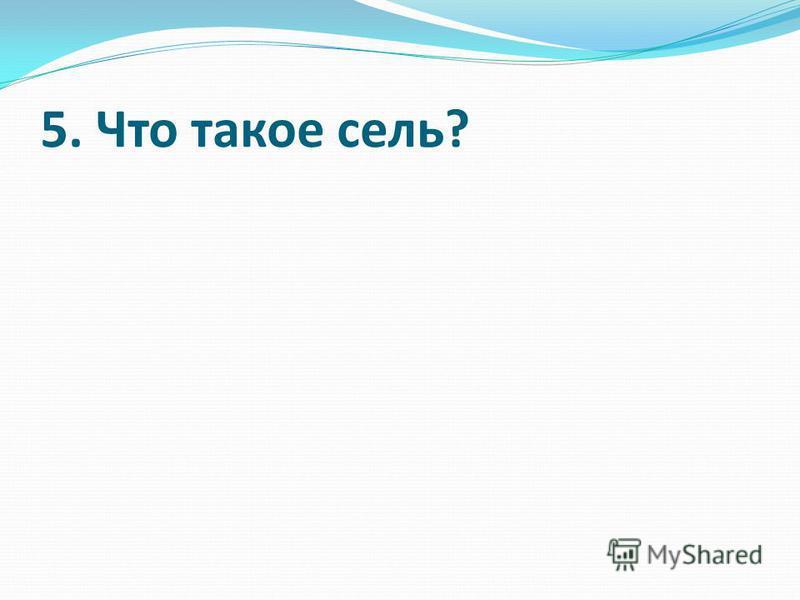 5. Что такое сель?