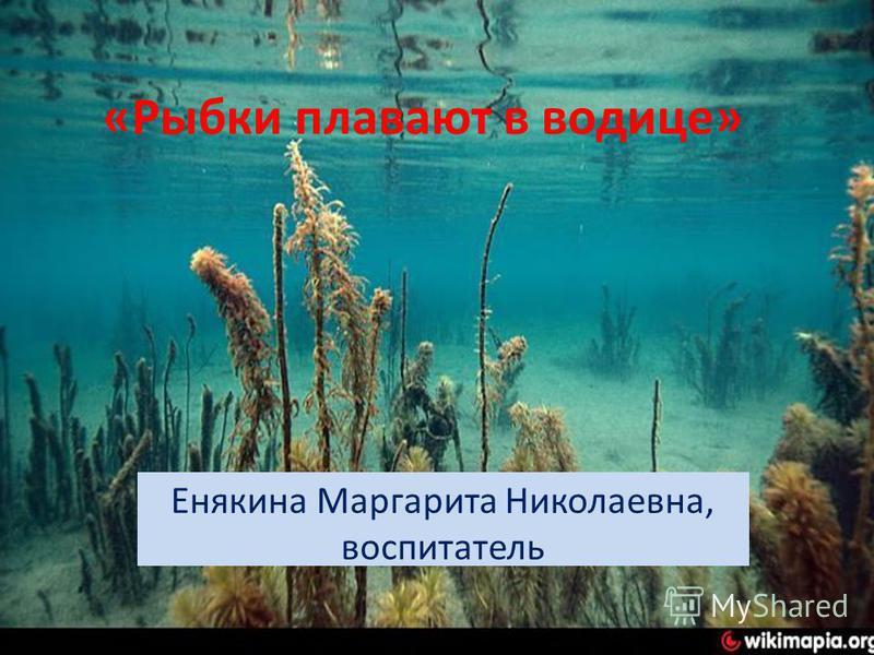 «Рыбки плавают в водице» Енякина Маргарита Николаевна, воспитатель
