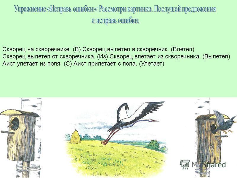 Скворец на скворечнике. (В) Скворец вылетел в скворечник. (Влетел) Скворец вылетел от скворечника. (Из) Скворец влетает из скворечника. (Вылетел) Аист улетает из поля. (С) Аист прилетает с пола. (Улетает)