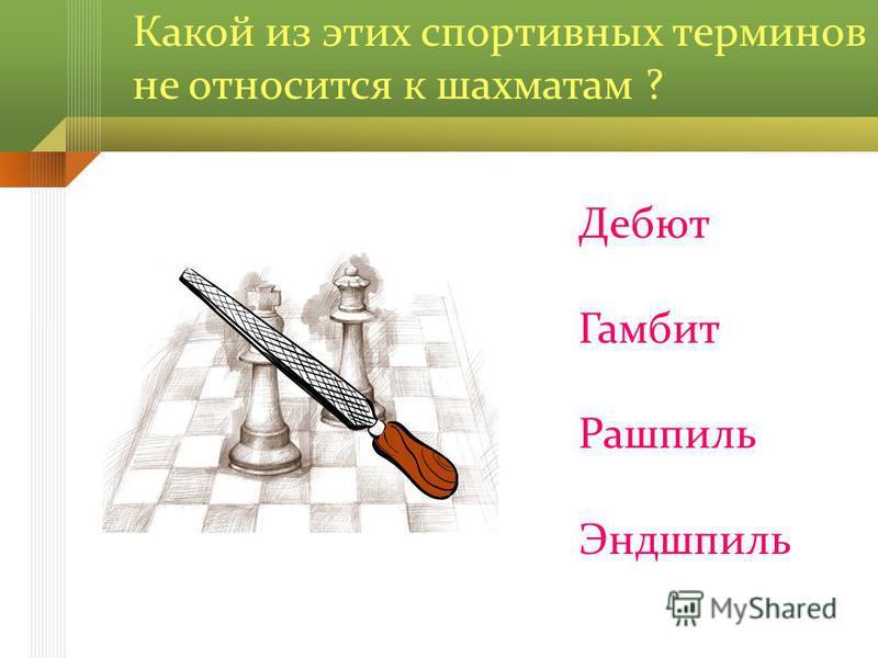 Какой из этих спортивных терминов не относится к шахматам ? Дебют Гамбит Рашпиль Эндшпиль