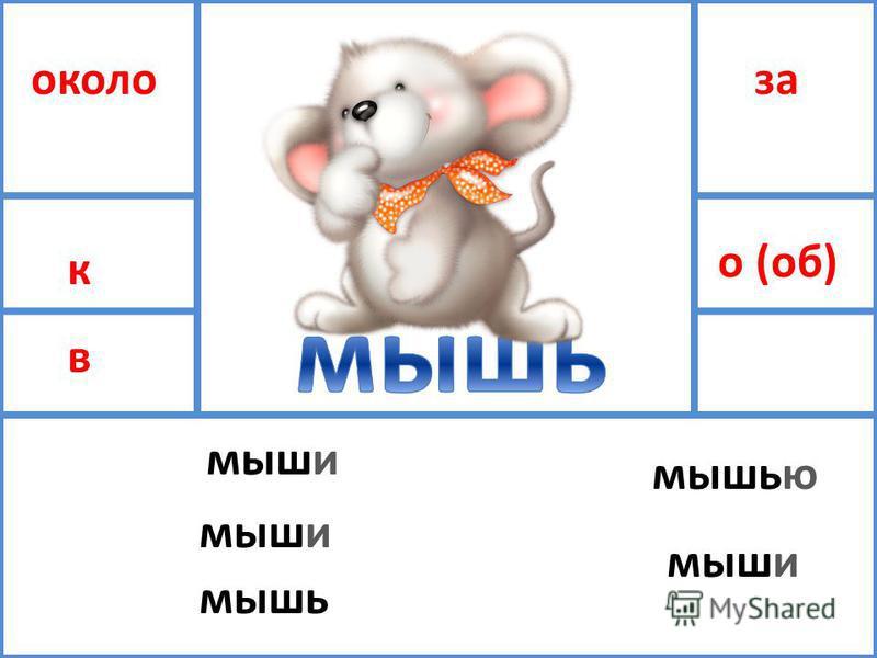 около к в за о (об) мыши мышь мышью мыши