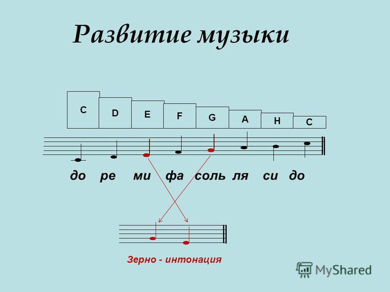 Развитие музыки C D E F G A H C до ре ми фа соль ля си до Зерно - интонация