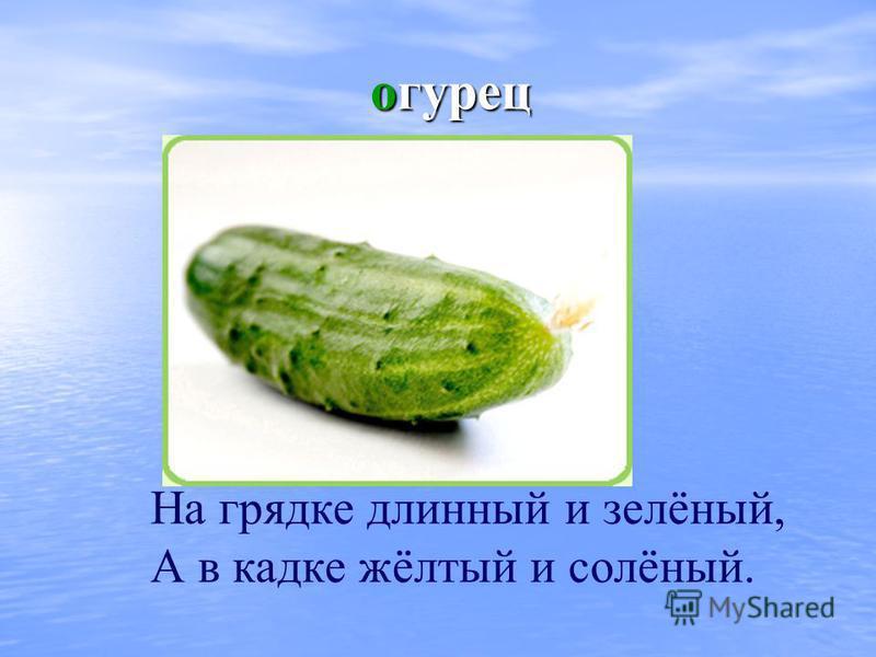 огурец огурец На грядке длинный и зелёный, А в кадке жёлтый и солёный.