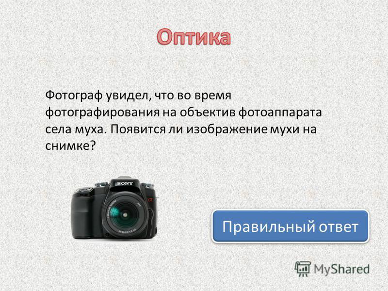 Фотограф увидел, что во время фотографирования на объектив фотоаппарата села муха. Появится ли изображение мухи на снимке? Правильный ответ