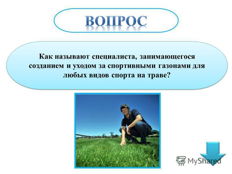 Как называют специалиста, занимающегося созданием и уходом за спортивными газонами для любых видов спорта на траве?