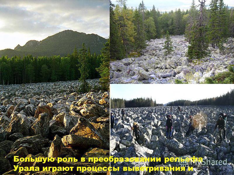 Большую роль в преобразовании рельефа Урала играют процессы выветривания и