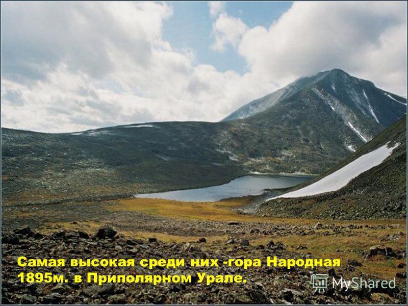 Самая высокая среди них -гора Народная 1895 м. в Приполярном Урале.