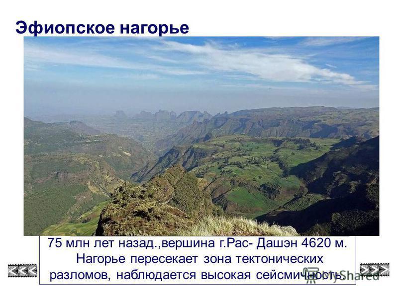 Эфиопское нагорье - горная система на северо-востоке Африки, образовалось нагорье 75 млн лет назад.,вершина г.Рас- Дашэн 4620 м. Нагорье пересекает зона тектонических разломов, наблюдается высокая сейсмичность. Эфиопское нагорье смотри