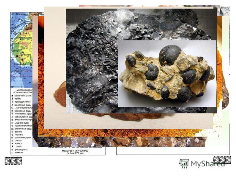 Место Африки по запасам полезных ископаемых Алмазы Золото фосфориты кобальт бокситы Марганцевые руды уран графит Медные руды газ Нефть железная руда