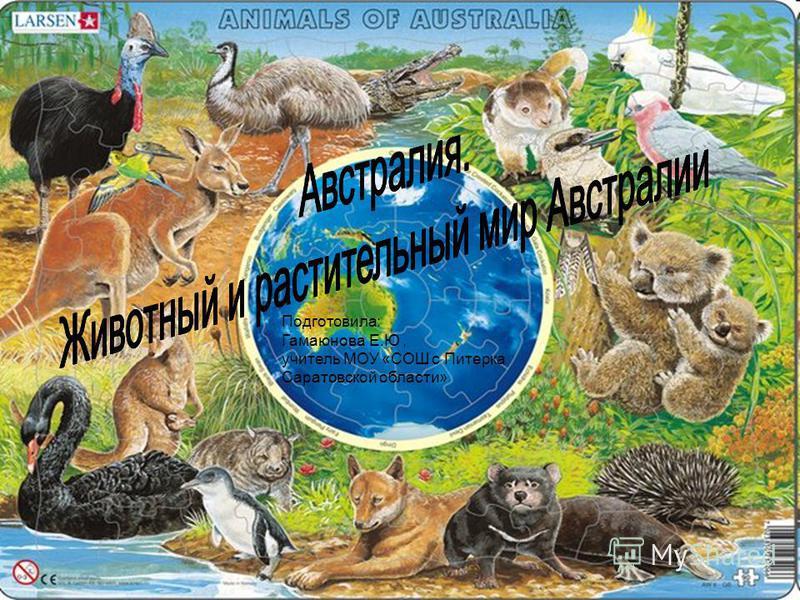 Подготовила: Гамаюнова Е.Ю, учитель МОУ «СОШ с Питерка Саратовской области»