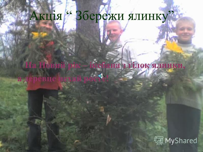 Акція Квіти в парк