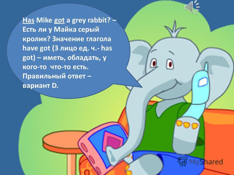 Has Mike got a grey rabbit? – Есть ли у Майка серый кролик? Значение глагола have got (3 лицо ед. ч.- has got) – иметь, обладать, у кого-то что-то есть. Правильный ответ – вариант D.