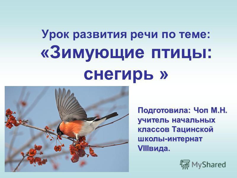 Урок развития речи по теме: «Зимующие птицы: снегирь » Подготовила: Чоп М.Н. учитель начальных классов Тацинской школы-интернат VIIIвида.