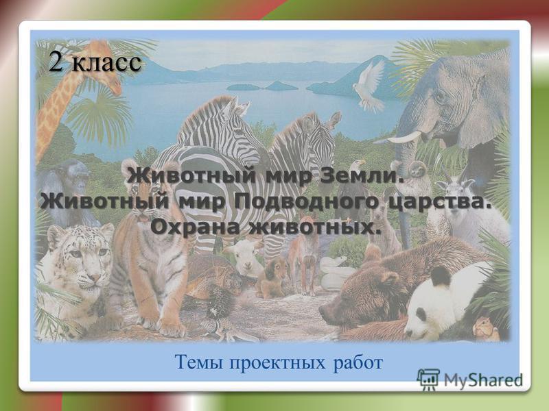 Животный мир Земли. Животный мир Подводного царства. Охрана животных. Темы проектных работ 2 класс