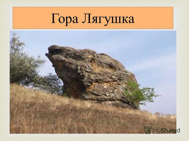 Это фрагмент восточного отрога Прикалаусских высот площадью около 500 га. Гора Лягушка интересна тем, что имеет своеобразное сочетание скал, пещерок и камней. В верхней части южного склона горы имеется карниз высотой 6 - 7 м, сложенный песчаниками. С