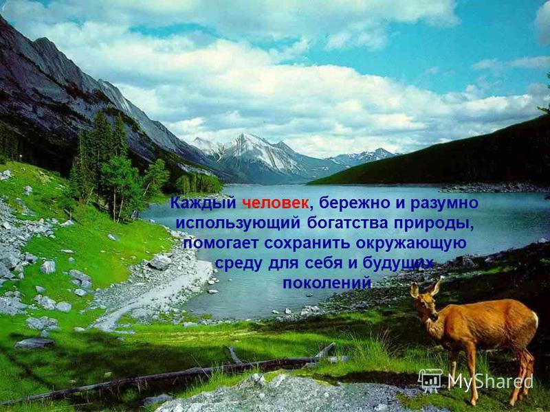 Каждый человек, бережно и разумно использующий богатства природы, помогает сохранить окружающую среду для себя и будущих поколений