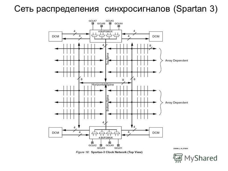 Сеть распределения синхросигналов (Spartan 3)