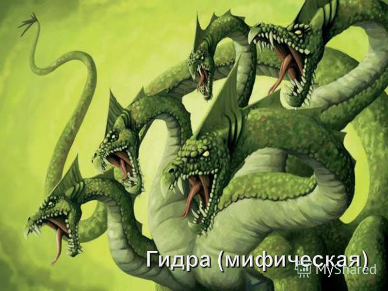 Гидра ( мифическая )