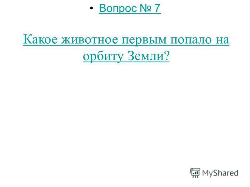 Вопрос 6 Какое дерево является символом России?
