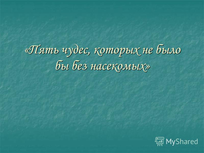 «Пять чудес, которых не было бы без насекомых»