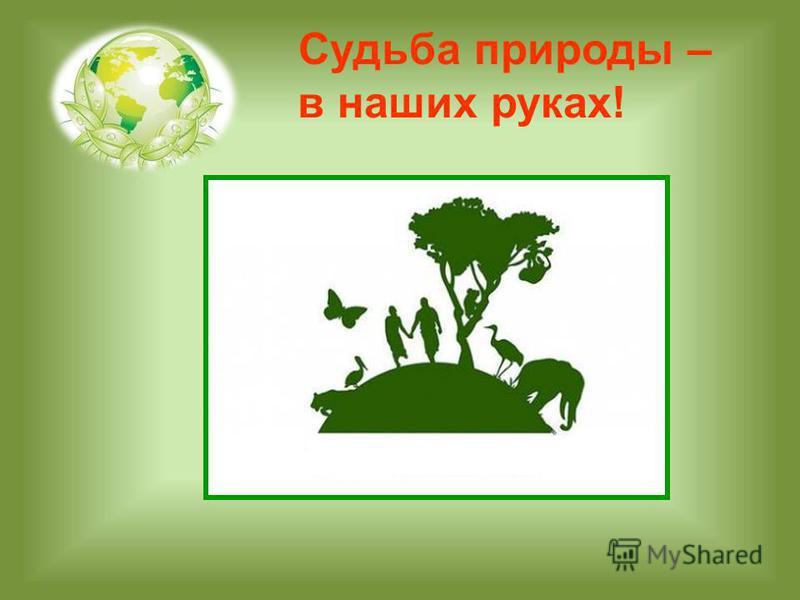 Судьба природы – в наших руках!