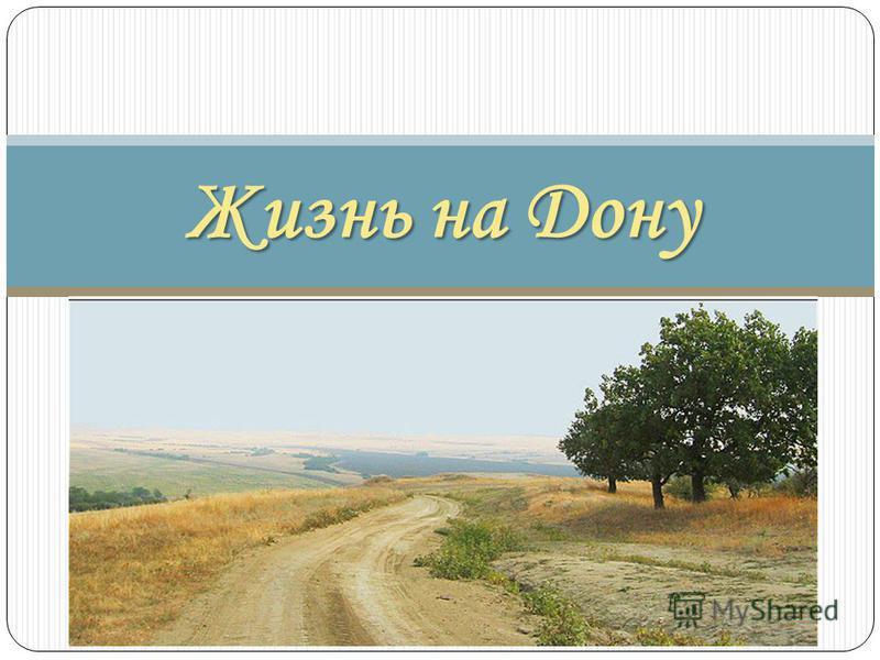 Жизнь на Дону