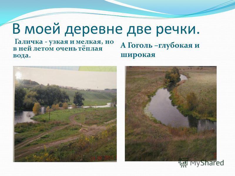 В моей деревне две речки. Галичка - узкая и мелкая, но в ней летом очень тёплая вода. А Гоголь –глубокая и широкая