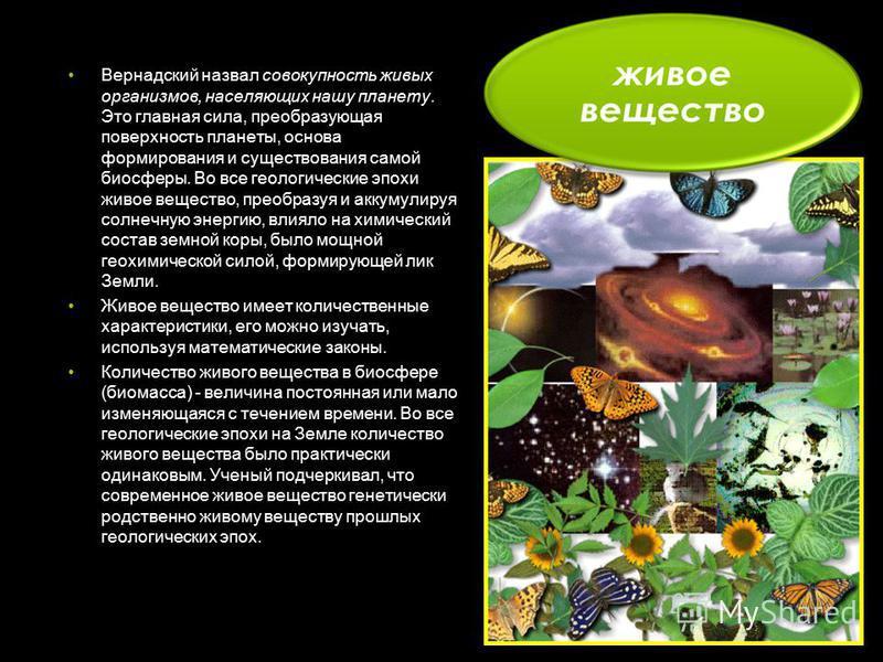 Вернадский назвал совокупность живых организмов, населяющих нашу планету. Это главная сила, преобразующая поверхность планеты, основа формирования и существования самой биосферы. Во все геологические эпохи живое вещество, преобразуя и аккумулируя сол
