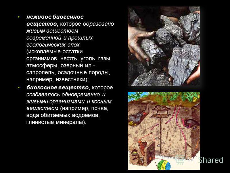 неживое биогенное вещество, которое образовано живым веществом современной и прошлых геологических эпох (ископаемые остатки организмов, нефть, уголь, газы атмосферы, озерный ил - сапропель, осадочные породы, например, известняки); биокосное вещество,