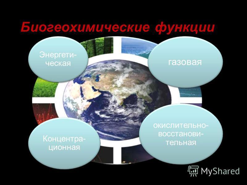Биогеохимические функции Энергети- ческая газовая окислительно- восстанови- тельная Концентра- ционная