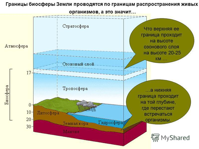 Границы биосферы Земли проводятся по границам распространения живых организмов, а это значит… Что верхняя ее граница проходит на высоте озонового слоя на высоте 20-25 км … …а нижняя граница проходит на той глубине, где перестают встречаться организмы
