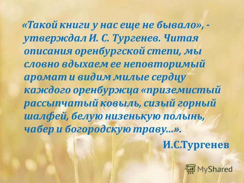 « Такой книги у нас еще не бывало », - утверждал И. С. Тургенев. Читая описания оренбургской степи, мы словно вдыхаем ее неповторимый аромат и видим милые сердцу каждого оренбуржца « приземистый рассыпчатый ковыль, сизый горный шалфей, белую низеньку
