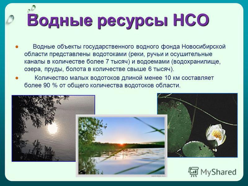Водные ресурсы НСО Водные объекты государственного водного фонда Новосибирской области представлены водотоками (реки, ручьи и осушительные каналы в количестве более 7 тысяч) и водоемами (водохранилище, озера, пруды, болота в количестве свыше 6 тысяч)