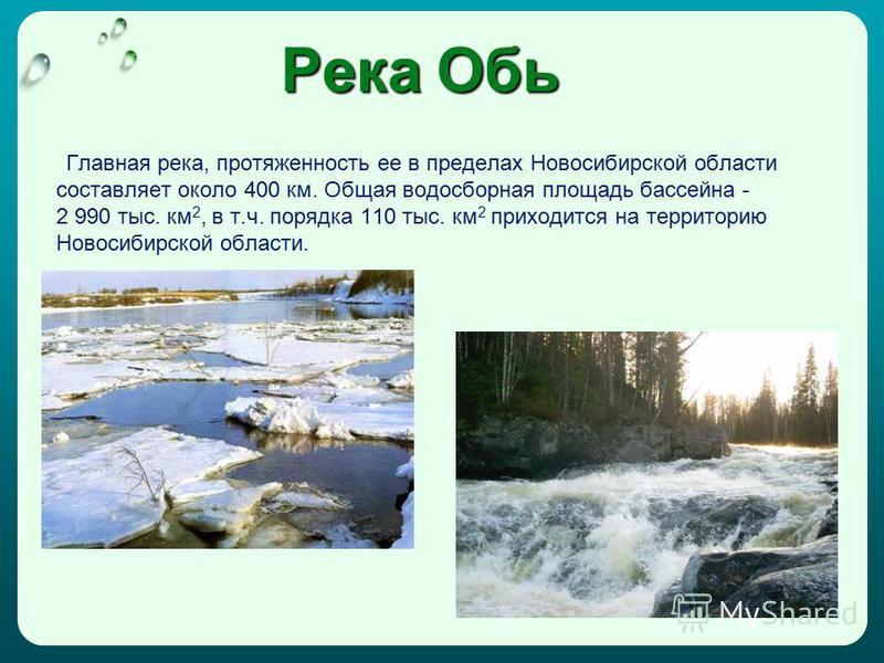 Река Обь Главная река, протяженность ее в пределах Новосибирской области составляет около 400 км. Общая водосборная площадь бассейна - 2 990 тыс. км 2, в т.ч. порядка 110 тыс. км 2 приходится на территорию Новосибирской области.