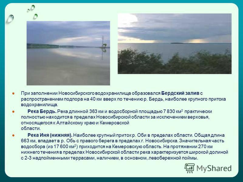 При заполнении Новосибирского водохранилища образовался Бердский залив с распространением подпора на 40 км вверх по течению р. Бердь, наиболее крупного притока водохранилища. Река Бердь. Река длинной 363 км и водосборной площадью 7 830 км 2 практичес