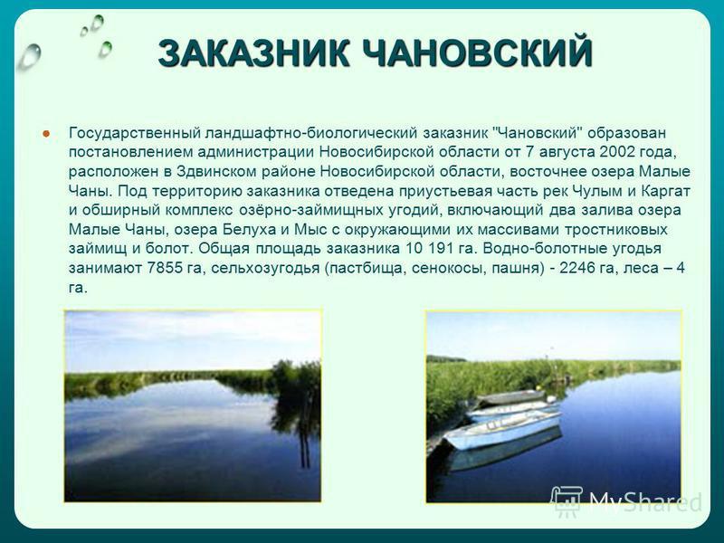 ЗАКАЗНИК ЧАНОВСКИЙ Государственный ландшафтно-биологический заказник