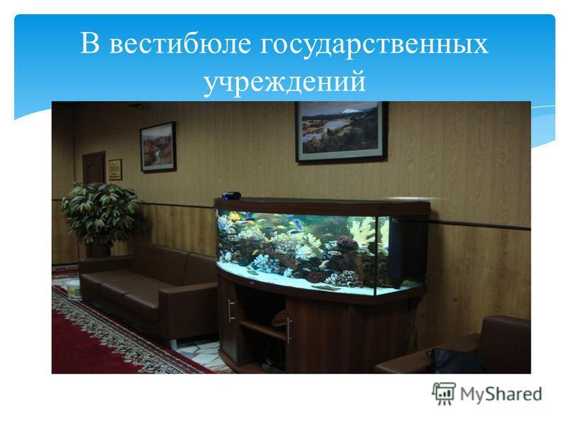 В вестибюле государственных учреждений