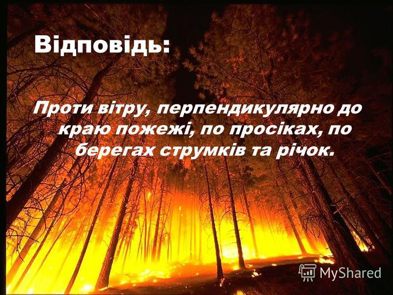 Відповідь: Проти вітру, перпендикулярно до краю пожежі, по просіках, по берегах струмків та річок.