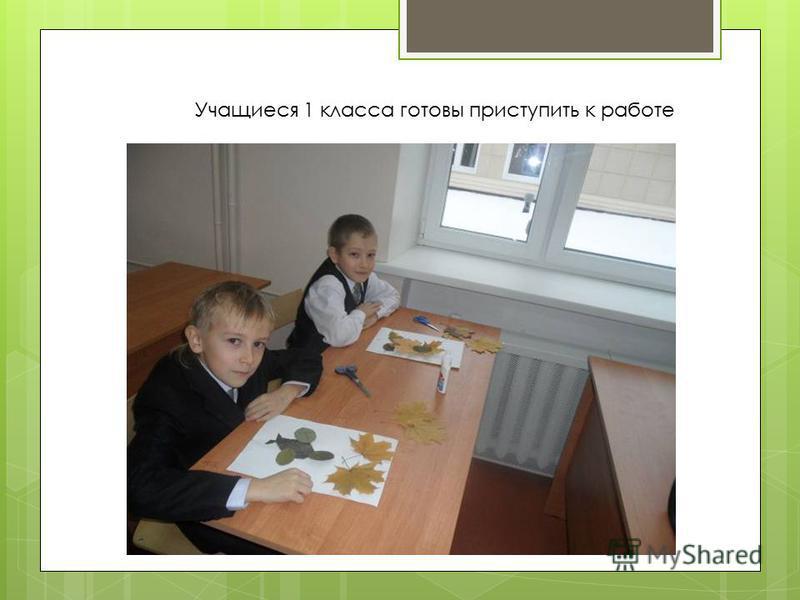 Учащиеся 1 класса готовы приступить к работе