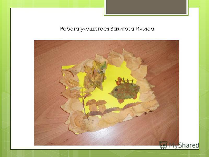 Работа учащегося Вахитова Ильяса