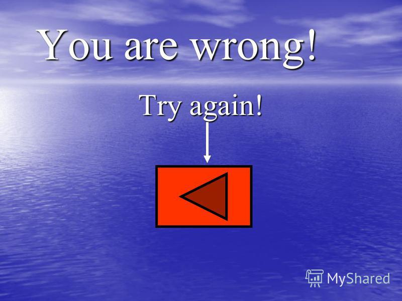 You are wrong! Try again!