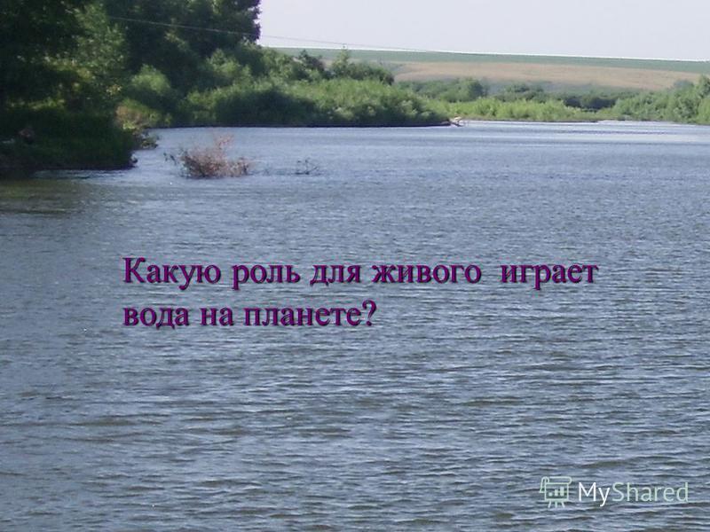 Какую роль для живого играет вода на планете?