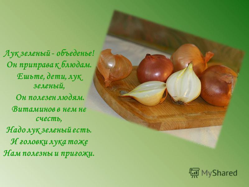 Лук зеленый - объеденье! Он приправа к блюдам. Ешьте, дети, лук зеленый, Он полезен людям. Витаминов в нем не счесть, Надо лук зеленый есть. И головки лука тоже Нам полезны и пригожи.