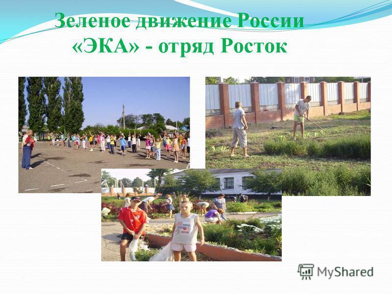 Зеленое движение России «ЭКА» - отряд Росток
