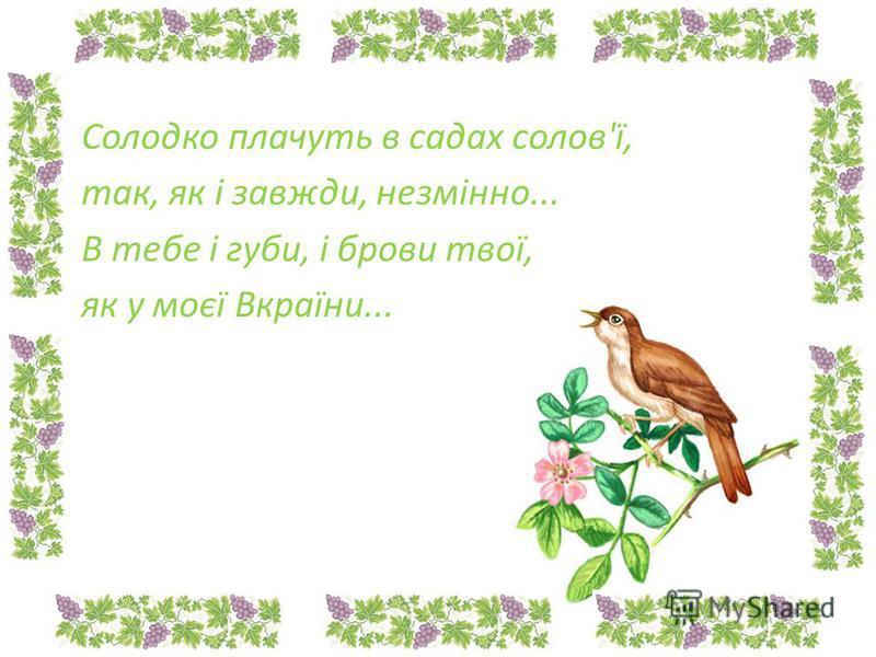 Солодко плачуть в садах солов'ї, так, як і завжди, незмінно... В тебе і губи, і брови твої, як у моєї Вкраїни...