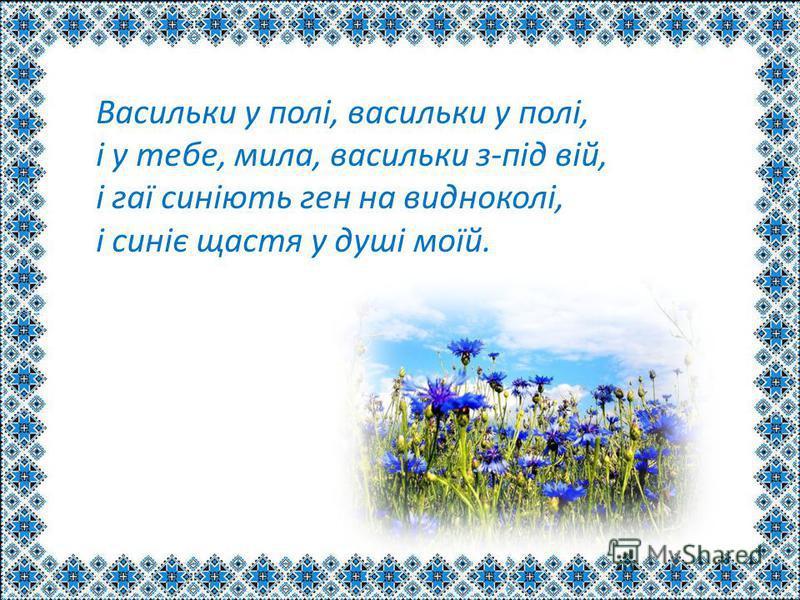 Васильки у полі, васильки у полі, і у тебе, мила, васильки з-під вій, і гаї синіють ген на видноколі, і синіє щастя у душі моїй.
