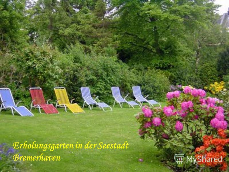 Waldblühne im Bürgerpark _ Erholungsgarten in der Seestadt Bremerhaven