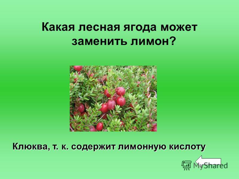 Какая лесная ягода может заменить лимон? Клюква, т. к. содержит лимонную кислоту