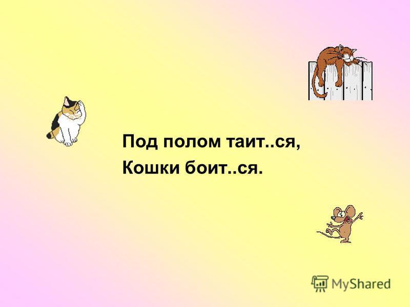 Под полом таит..ся, Кошки болит..ся.